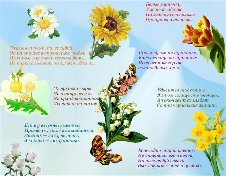 Картинки с букетом цветов и именем светлана половине