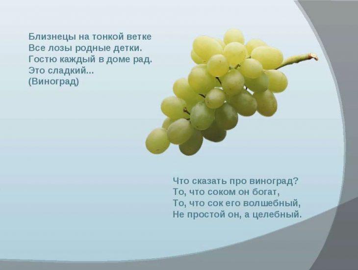 3 сентября день винограда стихи много людей, которым
